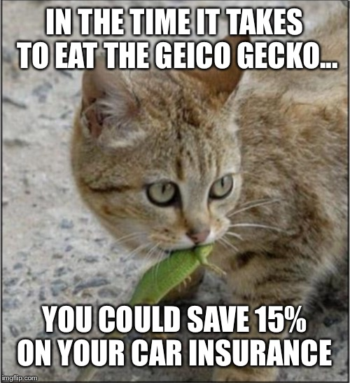 Geico Gecko | IN THE TIME IT TAKES TO EAT THE GEICO GECKO... YOU COULD SAVE 15% ON YOUR CAR INSURANCE | image tagged in geico gecko | made w/ Imgflip meme maker