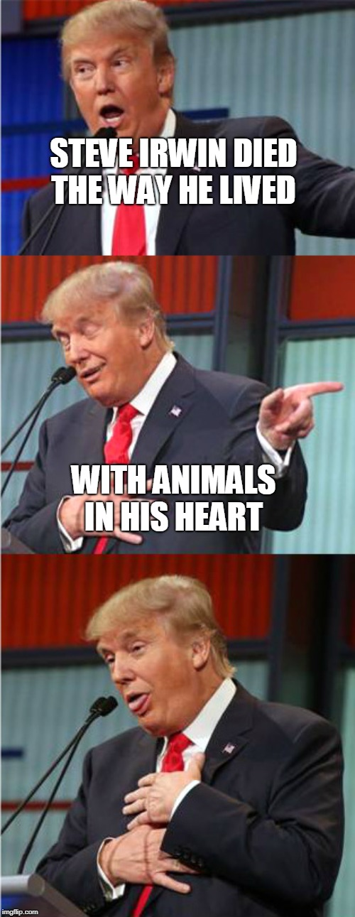 Savage Pun Trump  | STEVE IRWIN DIED THE WAY HE LIVED WITH ANIMALS IN HIS HEART | image tagged in bad pun trump,steve irwin,steve irwin crocodile hunter,animals,memes,savage | made w/ Imgflip meme maker