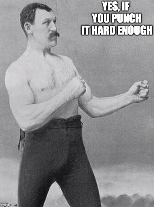 boxer | YES, IF YOU PUNCH IT HARD ENOUGH | image tagged in boxer | made w/ Imgflip meme maker