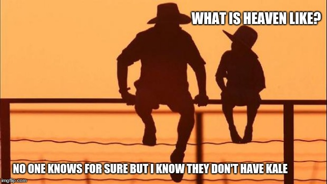 Cowboy wisdom, what is heaven like? | WHAT IS HEAVEN LIKE? NO ONE KNOWS FOR SURE BUT I KNOW THEY DON'T HAVE KALE | image tagged in cowboy father and son,cowboy wisdom,kale is not food,kale | made w/ Imgflip meme maker