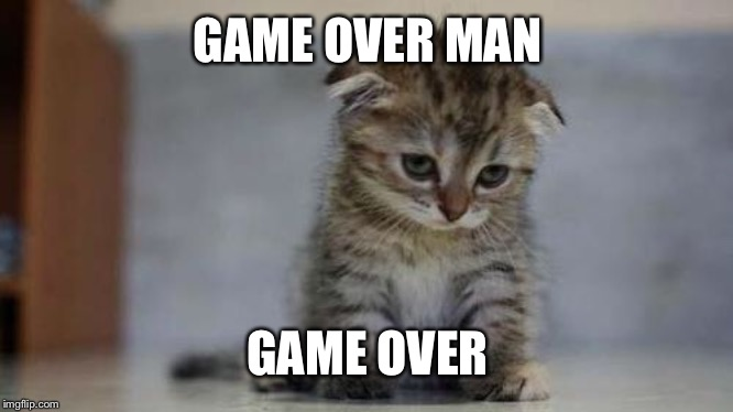 Sad kitten | GAME OVER MAN GAME OVER | image tagged in sad kitten | made w/ Imgflip meme maker