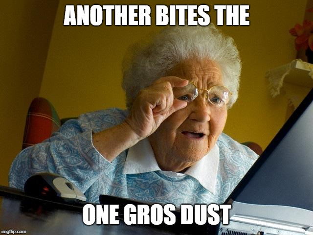 Grandma Finds The Internet Meme | ANOTHER BITES THE ONE GROS DUST | image tagged in memes,grandma finds the internet | made w/ Imgflip meme maker
