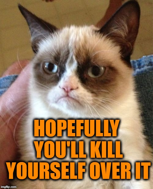 Grumpy Cat Meme | HOPEFULLY YOU'LL KILL YOURSELF OVER IT | image tagged in memes,grumpy cat | made w/ Imgflip meme maker
