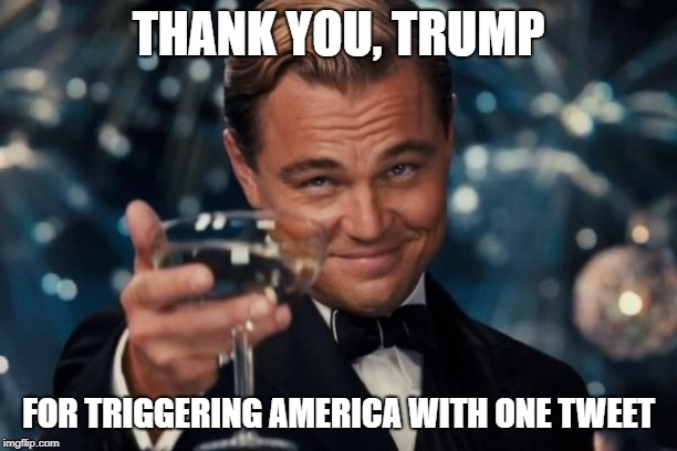 Leonardo Dicaprio Cheers | THANK YOU, TRUMP FOR TRIGGERING AMERICA WITH ONE TWEET | image tagged in memes,leonardo dicaprio cheers | made w/ Imgflip meme maker