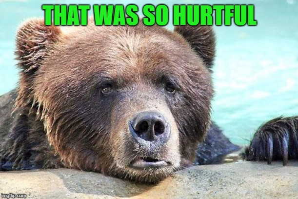 Sad Bears | THAT WAS SO HURTFUL | image tagged in sad bears | made w/ Imgflip meme maker