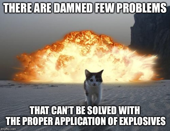 What dog? | THERE ARE DAMNED FEW PROBLEMS THAT CAN'T BE SOLVED WITH THE PROPER APPLICATION OF EXPLOSIVES | image tagged in cat explosion,explosive,dogs,memes | made w/ Imgflip meme maker