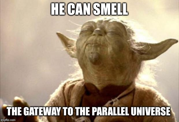yoda smell | HE CAN SMELL THE GATEWAY TO THE PARALLEL UNIVERSE | image tagged in yoda smell | made w/ Imgflip meme maker