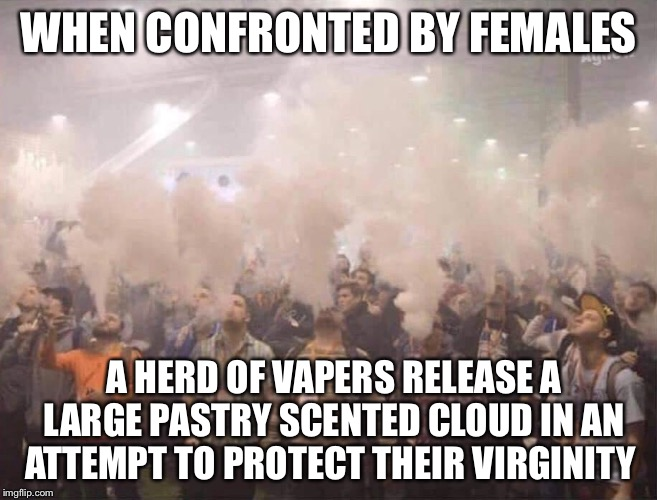 WHEN CONFRONTED BY FEMALES A HERD OF VAPERS RELEASE A LARGE PASTRY SCENTED CLOUD IN AN ATTEMPT TO PROTECT THEIR VIRGINITY | image tagged in vape,vape nation | made w/ Imgflip meme maker