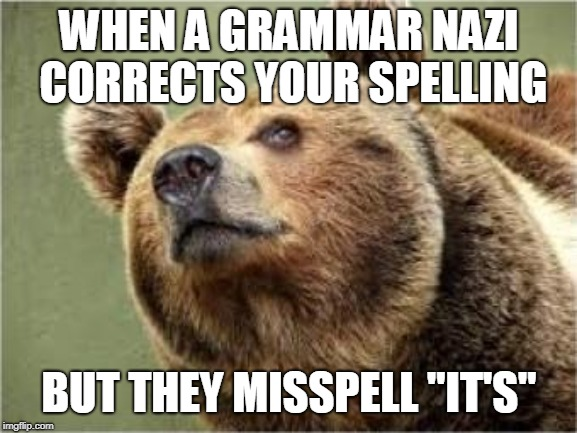 "Smug Bear | WHEN A GRAMMAR NAZI CORRECTS YOUR SPELLING BUT THEY MISSPELL ""IT'S"" 
