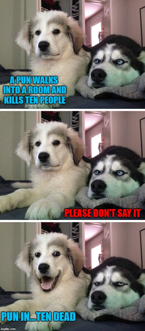 It was a massacre!!! |  A PUN WALKS INTO A ROOM AND KILLS TEN PEOPLE; PLEASE DON'T SAY IT; PUN IN...TEN DEAD | image tagged in bad pun dogs,memes,bad puns,funny,puns,dogs | made w/ Imgflip meme maker