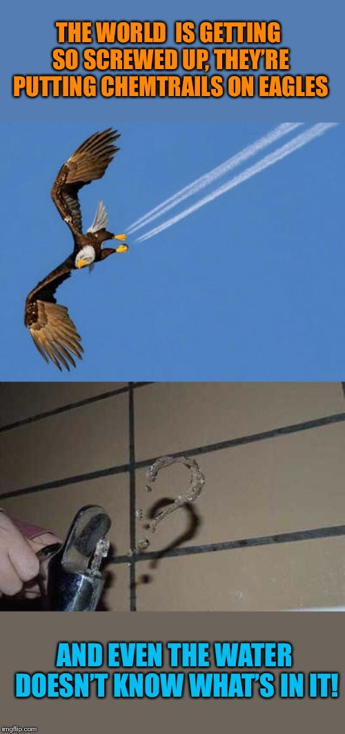 It's a conspiracy! |  THE WORLD  IS GETTING SO SCREWED UP, THEY'RE PUTTING CHEMTRAILS ON EAGLES; AND EVEN THE WATER DOESN'T KNOW WHAT'S IN IT! | image tagged in eagles,chemtrails,water,pollution,it's a conspiracy,funny picture | made w/ Imgflip meme maker