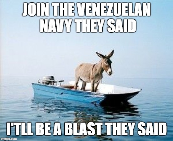 DONKEY ON A BOAT | JOIN THE VENEZUELAN NAVY THEY SAID I'TLL BE A BLAST THEY SAID | image tagged in donkey on a boat | made w/ Imgflip meme maker