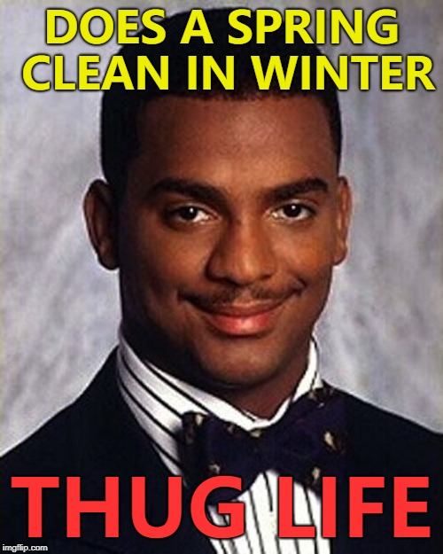 And he drank spring water while doing it... :) | DOES A SPRING CLEAN IN WINTER THUG LIFE | image tagged in carlton banks thug life,memes,spring cleaning,spring clean,seasons | made w/ Imgflip meme maker