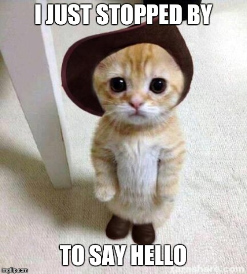 Hello Cutie | I JUST STOPPED BY TO SAY HELLO | image tagged in cute cat,hello | made w/ Imgflip meme maker