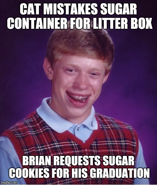 Bad Yuck Brian  |  CAT MISTAKES SUGAR CONTAINER FOR LITTER BOX; BRIAN REQUESTS SUGAR COOKIES FOR HIS GRADUATION | image tagged in memes,bad luck brian,sugar,evil cat,why me,beat-up bad luck brian | made w/ Imgflip meme maker