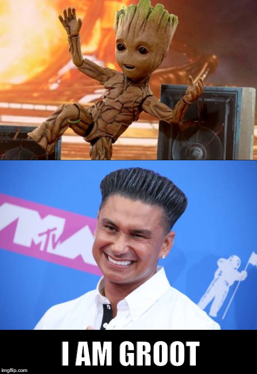 I AM GROOT | image tagged in dj pauly d,i am groot | made w/ Imgflip meme maker