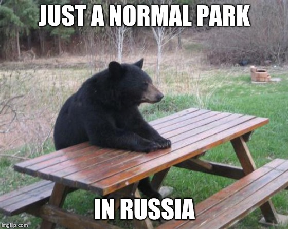 Bad Luck Bear | JUST A NORMAL PARK IN RUSSIA | image tagged in memes,bad luck bear | made w/ Imgflip meme maker