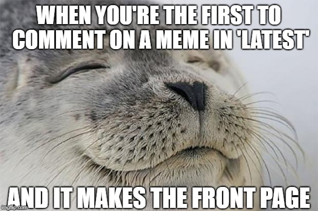 Satisfied Seal |  WHEN YOU'RE THE FIRST TO COMMENT ON A MEME IN 'LATEST'; AND IT MAKES THE FRONT PAGE | image tagged in memes,satisfied seal | made w/ Imgflip meme maker