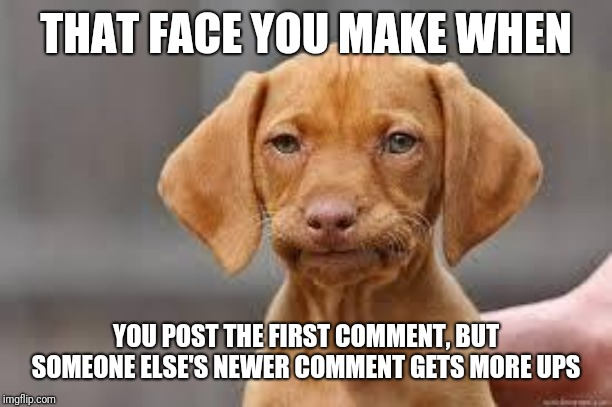 Disappointed Dog | THAT FACE YOU MAKE WHEN YOU POST THE FIRST COMMENT, BUT SOMEONE ELSE'S NEWER COMMENT GETS MORE UPS | image tagged in disappointed dog | made w/ Imgflip meme maker