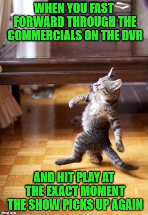 All bow to the Master of the DVR! | WHEN YOU FAST FORWARD THROUGH THE COMMERCIALS ON THE DVR AND HIT PLAY AT THE EXACT MOMENT THE SHOW PICKS UP AGAIN | image tagged in memes,cool cat stroll,dvr,commercials,fast forward skillz on point,funny | made w/ Imgflip meme maker