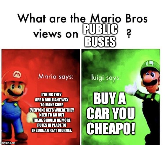 Mario Bros Views | I THINK THEY ARE A BRILLIANT WAY TO MAKE SURE EVERYONE GETS WHERE THEY NEED TO GO BUT THERE SHOULD BE MORE RULES IN PLACE TO ENSURE A GREAT  | image tagged in mario bros views | made w/ Imgflip meme maker