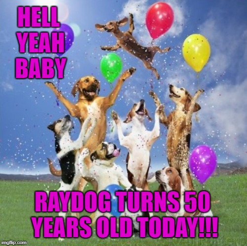 Happy Birthday To Me!!! I'm now officially a Golden Oldie! | HELL YEAH BABY RAYDOG TURNS 50 YEARS OLD TODAY!!! | image tagged in dog hurrah,memes,raydog,happy birthday,golden oldie,50 | made w/ Imgflip meme maker