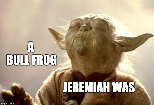 A Good Friend Of Mine He Was | A BULL FROG JEREMIAH WAS | image tagged in yoda smell,frogs,frog,memes,yoda joke,yoda stoned | made w/ Imgflip meme maker