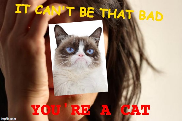 First World Problems | IT CAN'T BE THAT BAD YOU'RE A CAT | image tagged in memes,first world problems,grumpy cat,crying woman,another picture from,i don't want to live on this planet anymore | made w/ Imgflip meme maker