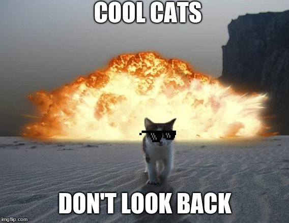 cat explosion | COOL CATS DON'T LOOK BACK | image tagged in cat explosion | made w/ Imgflip meme maker
