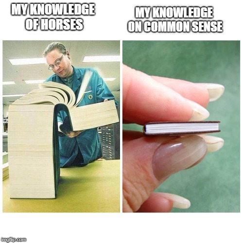 Seriously  |  MY KNOWLEDGE ON COMMON SENSE; MY KNOWLEDGE OF HORSES | image tagged in big book vs little book,horse,memes,funny,common sense,knowledge | made w/ Imgflip meme maker