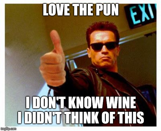 terminator thumbs up | LOVE THE PUN I DON'T KNOW WINE I DIDN'T THINK OF THIS | image tagged in terminator thumbs up | made w/ Imgflip meme maker