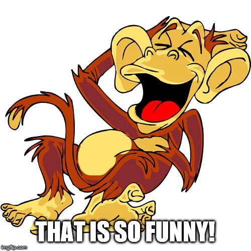 laughing monkey | THAT IS SO FUNNY! | image tagged in laughing monkey | made w/ Imgflip meme maker
