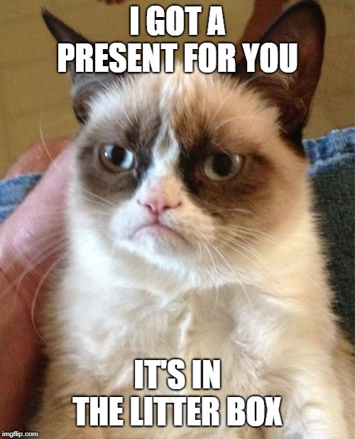 Grumpy Cat | I GOT A PRESENT FOR YOU IT'S IN THE LITTER BOX | image tagged in memes,grumpy cat | made w/ Imgflip meme maker