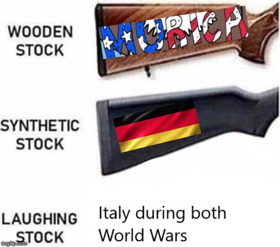 image tagged in memes,'murica,ww2,why not,italy,germany | made w/ Imgflip meme maker
