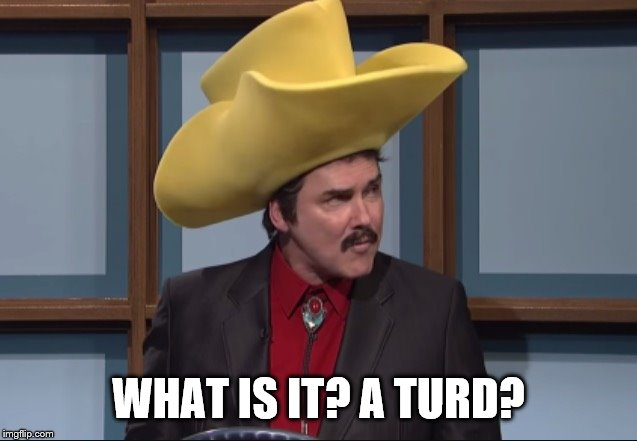 Turd Ferguson  | WHAT IS IT? A TURD? | image tagged in turd ferguson | made w/ Imgflip meme maker