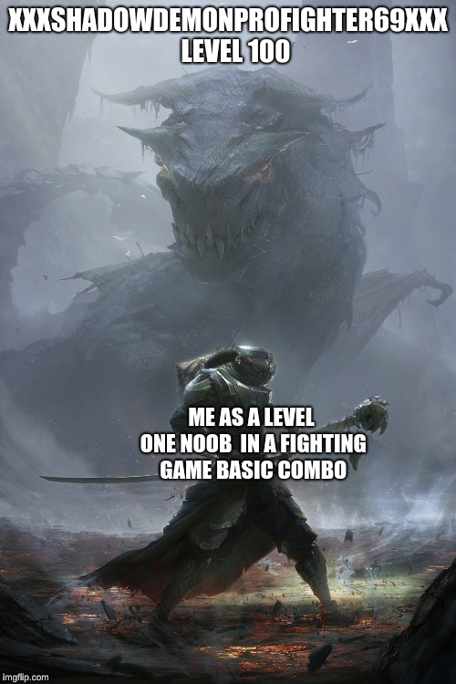XXXSHADOWDEMONPROFIGHTER69XXX   LEVEL 100 ME AS A LEVEL ONE NOOB  IN A FIGHTING GAME BASIC COMBO | image tagged in memes | made w/ Imgflip meme maker