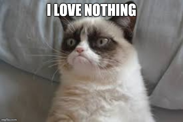 Grumpy cat | I LOVE NOTHING | image tagged in grumpy cat | made w/ Imgflip meme maker