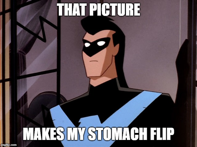 Minor Mistake Nightwing | THAT PICTURE MAKES MY STOMACH FLIP | image tagged in minor mistake nightwing | made w/ Imgflip meme maker