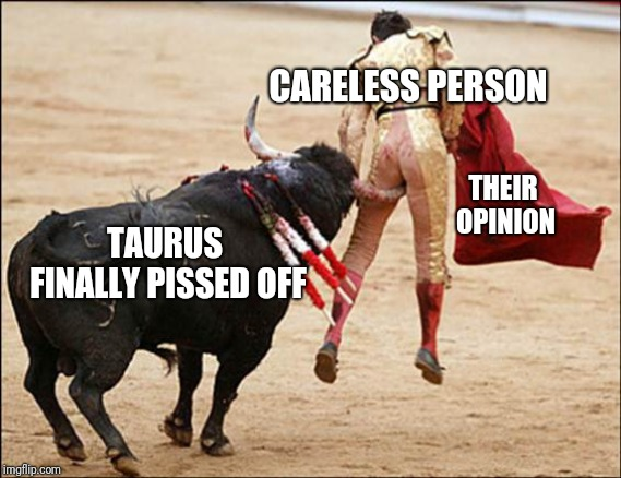Mess With The Bull | TAURUS FINALLY PISSED OFF CARELESS PERSON THEIR OPINION | image tagged in consequences of stupidity,fights,meme war,bulls,opinions | made w/ Imgflip meme maker