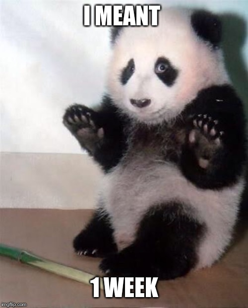 Hands Up panda | I MEANT 1 WEEK | image tagged in hands up panda | made w/ Imgflip meme maker