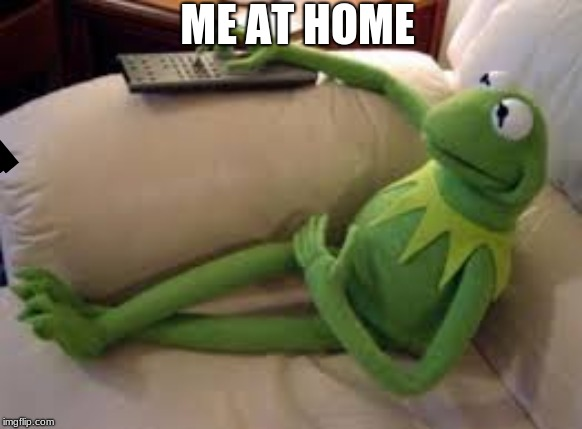 ME AT HOME | image tagged in kermit,lazy,tv | made w/ Imgflip meme maker