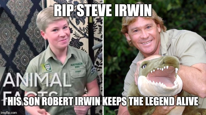 RIP STEVE IRWIN HIS SON ROBERT IRWIN KEEPS THE LEGEND ALIVE | image tagged in robert irwin | made w/ Imgflip meme maker