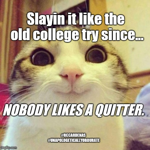 Smiling Cat |  Slayin it like the old college try since... NOBODY LIKES A QUITTER. #RCCARDENAS #UNAPOLOGETICALLYOBDURATE | image tagged in memes,smiling cat,college,try,college humor,humor | made w/ Imgflip meme maker