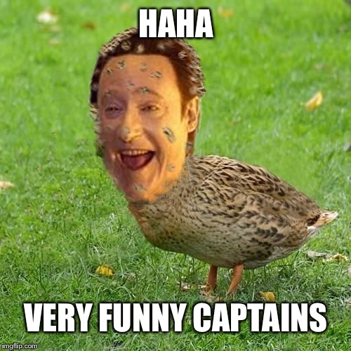 The Data Ducky | HAHA VERY FUNNY CAPTAINS | image tagged in the data ducky | made w/ Imgflip meme maker
