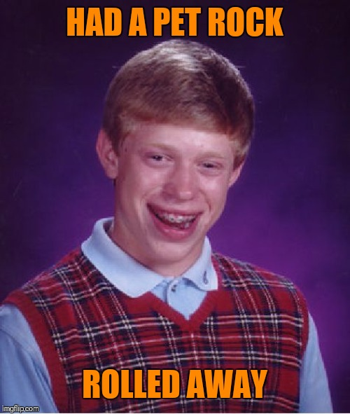 Bad Luck Brian |  HAD A PET ROCK; ROLLED AWAY | image tagged in memes,bad luck brian,pet rock,funny,pets,run away | made w/ Imgflip meme maker