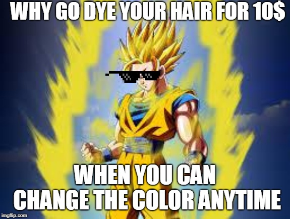 Dragon ball z | WHY GO DYE YOUR HAIR FOR 10$ WHEN YOU CAN CHANGE THE COLOR ANYTIME | image tagged in dragon ball z | made w/ Imgflip meme maker