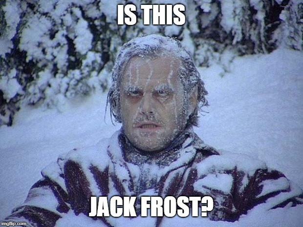 Jack Nicholson The Shining Snow | IS THIS JACK FROST? | image tagged in memes,jack nicholson the shining snow,jack frost,winter | made w/ Imgflip meme maker