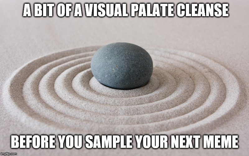 zen | A BIT OF A VISUAL PALATE CLEANSE BEFORE YOU SAMPLE YOUR NEXT MEME | image tagged in zen | made w/ Imgflip meme maker