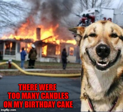 My birthday cakes are starting to get heavy!!! | THERE WERE TOO MANY CANDLES ON MY BIRTHDAY CAKE | image tagged in disaster dog,memes,birthday cake,funny,birthday | made w/ Imgflip meme maker