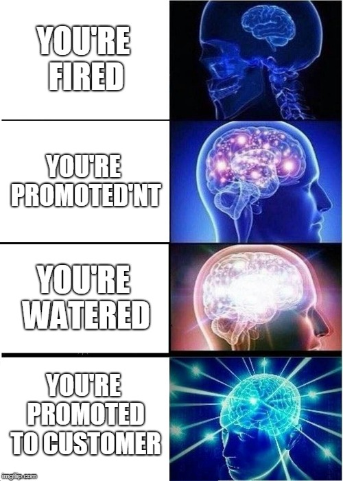 If this aint on the front page im gonna say i quit to my job, which i dont have | YOU'RE FIRED YOU'RE PROMOTED'NT YOU'RE WATERED YOU'RE PROMOTED TO CUSTOMER | image tagged in memes,expanding brain,you're fired | made w/ Imgflip meme maker